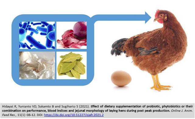 4-_probiotic_and_phytobiotics_on_blood__jejunal_of_laying_hens--