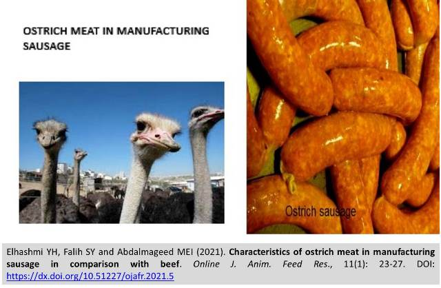 5-ostrich_meat_in_manufacturing_sausage_vs_beef---